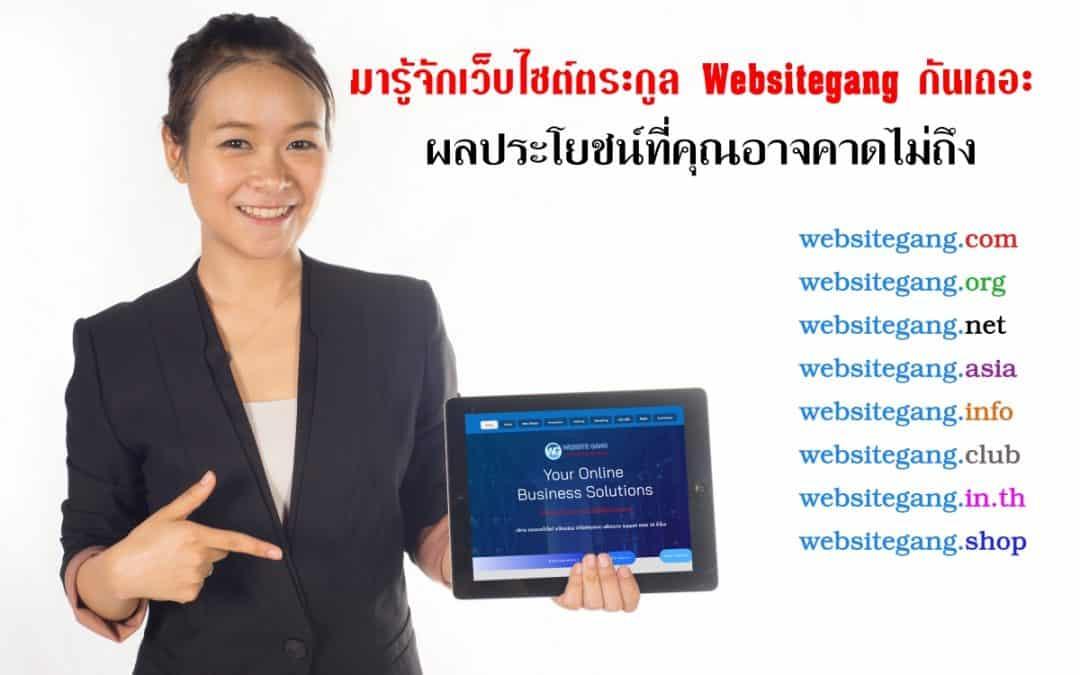 เว็บไซต์ตระกูล Websitegang